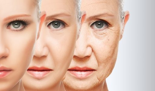 anti-aging-compounds
